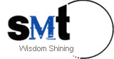 Wisdom Shining Electronic Technology (China) Limited