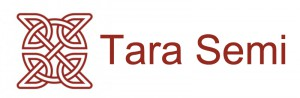 Tara Semiconductor Technology Irl Ltd