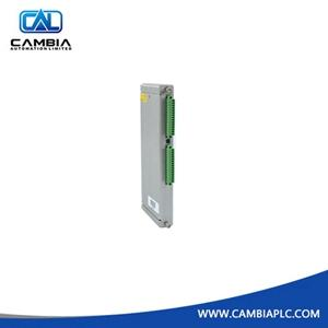 330106-05-30-05-02-05	BENTLY NEVADA	Email:info@cambia.cn