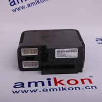 EMERSON WESTINGHOUSE 1G31234G01 | sales2@amikon.cn | Sweet Price