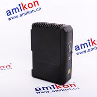 EMERSON WESTINGHOUSE 1G31169G02 | sales2@amikon.cn | Sweet Price