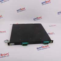 TRICONEX 4507 Distributed Control System (DCS)  | sales2@amikon.cn