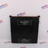 269PLUS-100P-120 DCS PLC-Mall Worldwide shipping NEW&ORIGINAL IN STOCK