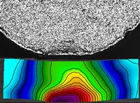 Deformation analysis using Condor Sigma