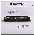 HONEYWELL 51309276-150 High Quality Sweet Price | sales2@amikon.cn