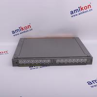 T8843 Trusted 40 Channel Digital Input Versatile FTA