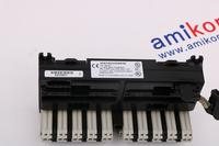 IC693PCM300RR	| GE General Electric |	Programmable Coprocessor Module