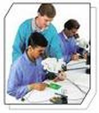 Custom Solder Training